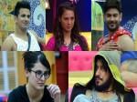 Who Will Win Bigg Boss 9 Mandana Rochelle Prince Or Risahbh
