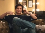 क्या 'जीरो' के बाद अब नेटफ्लिक्स सीरिज में दिखेंगे शाहरुख खान? देंखे वीडियो