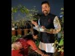 शिल्पा शेट्टी ने मनाया करवा चौथ, छुए पति के पैर, लिया आशीर्वाद