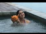 कार्तिक से ब्रेकअप के बाद सारा अली खान की पहली बार बिकिनी में फोटो, धड़ल्ले से Viral