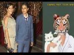 ज़ोया और रीमा की 'टाइगर बेबी फिल्म्स' का इंस्टाग्राम पर रणवीर-आलिया ने किया अनोखा स्वागत