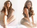 रश्मि देसाई ने शेयर की सेक्सी बेडरूम तस्वीरें, बोल्ड पोज से खींचा सबका ध्यान