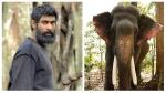 राणा दग्गुबाती ने हाथियों को बचाने के लिए लिखा खुला पत्र, इरोस नाउ ने कही इतनी बड़ी बात!