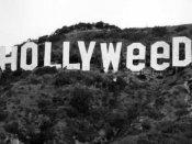 हॉलीवुड बना 'हॉलीवीड'..पढ़ें क्या है माजरा