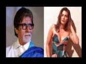कृति सेनन ने पोस्ट की बोल्ड तस्वीर, अमिताभ बच्चन ने किया ऐसा कमेंट, लोगों ने की जमकर बेइज्जती