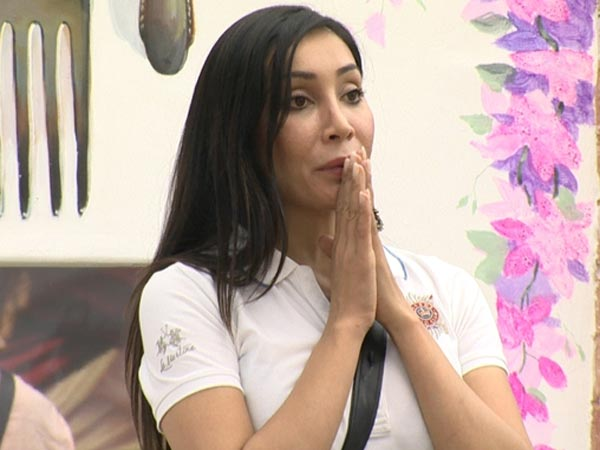 Sofia shocked to see Armaan back to Bigg Boss 7