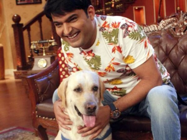 Kapil Sharma has competition from unexpected quarters. Zanjeer, an abandoned dog