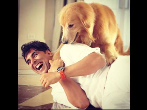 #Lolwa: अक्षय कुमार फिर करेंगे हंसी के दंगे...रोहित शेट्टी के साथ
