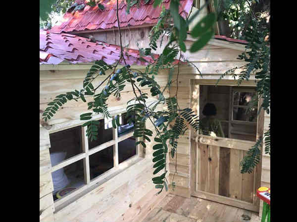 abram-khan-s-tree-house-is-just-too-adorable-see-pics
