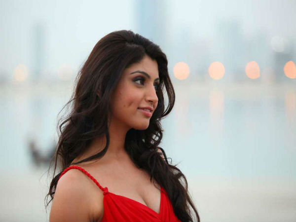 Calendar Girls Akanksha Puri To Make Her TV Debut