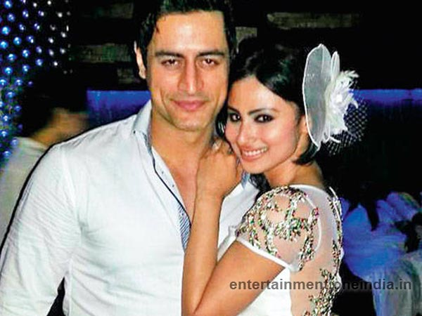 mohit raina,mouni roy