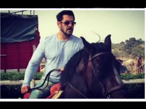 सलमान खान का होगा सुपर DHAMAKA.. 'टाईगर जिंदा है' के साथ तैयारी शुरु!