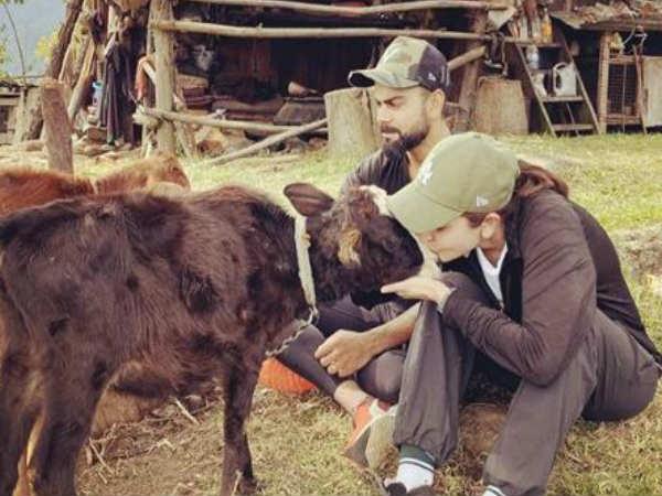 अनुष्का शर्मा और विराट कोहली की शानदार तस्वीरें वायरल- बकरी को Kiss कर रहीं हैं एक्ट्रेस