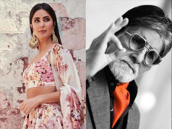कैटरीना कैफ बनेंगी अमिताभ बच्चन की ऑन स्क्रीन बेटी- ये है फिल्म और पूरी डिटेल !