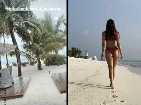 टाईगर श्रॉफ और दिशा पटानी की बिकीनी तस्वीरें वायरल | Tiger Shroff and Disha Patani viral bikini pics from exotic maldives holiday