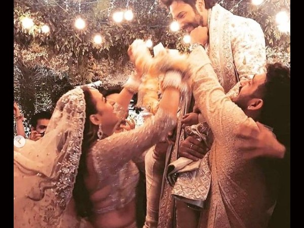वरुण धवन और नताशा दलाल का वेडिंग ALBUM, हल्दी से लेकर वरमाला तक, शादी की सभी PICS-VIDEO