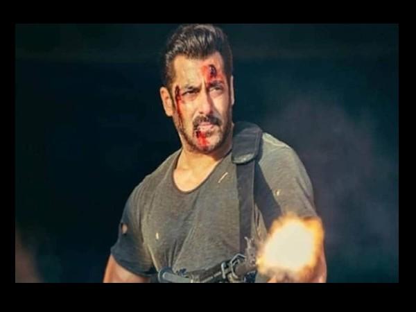 <strong>T</strong><strong>iger 3 में धुआंधार एक्शन, सलमान खान की खतरनाक ट्रेनिंग, 350 करोड़ का बजट तगड़ी प्लानिंग !</strong>