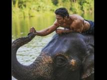 http://hindi.filmibeat.com/img/2019/03/junglee-1553835418.jpg
