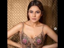 http://hindi.filmibeat.com/img/2020/12/shan-1609221890.jpg
