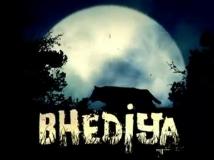 https://hindi.filmibeat.com/img/2021/02/varun-dhawan-kriti-sanon-bhediya-1613914445.jpg