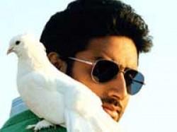 Rakyesh Mehra Kills Abhishek For Venice