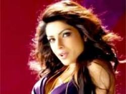 Priyanka Chopra Looks Hot In Whats Your Rashee