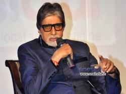 Amitabh Bachchan To Endorse Of Etawah Lion Safari