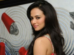 Sana Khan Could Well Be The Surprise Package The Film Jai Ho