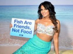 Fish Are Friends Not Food Said Hot Richa Chadda New Peta Ad Shoot