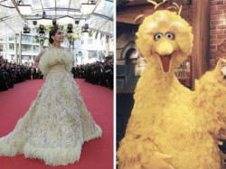 Cannes Red Carpet Sonam Kapoor Looks Like Duck