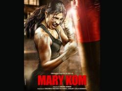 Salman Khan Akshay Kumar Priyanka Chopra Actors Become Boxer