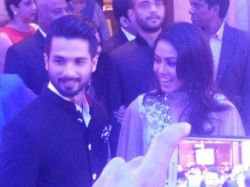 Shahid Kapoor And Meera To Go For A Second Honeymoon 050635 Pg