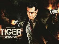 Kabir Khan Rejected Ek Tha Tiger Sequel