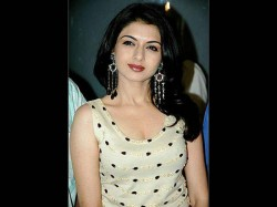 Salman Khan Actress Bhagyashree Pleads Innocent In Another Hit And Run Case