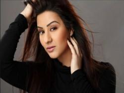 Shilpa Shinde Reply Sameeksha On Bhabhi Ji Ghar Par Hai Sanjay Kolhli