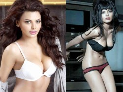 Actress Sherlyn Chopra Bold Pictures Video Went Viral