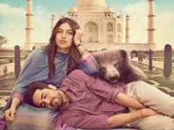 Shubh Mangal Saavdhan Became Superhit Film