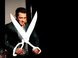 Salman Khan Bigg Boss 11 Read The Detail