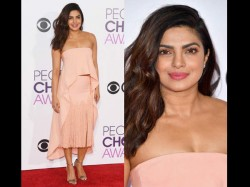 Priyanka Chopra Charge One Crore Per Minute A Stage Performance