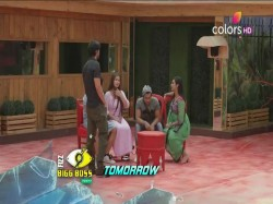 Bigg Boss 11 Arshi Khan Make Team Shilpa Shinde Beg
