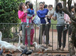 Shahid Kapoor Wife Mira Rajput Slams Media For Clicking Daughter Misha Pics