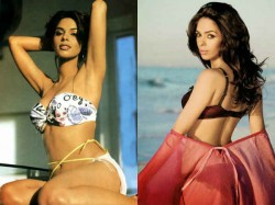 Actress Mallika Sherawat Making Come Back See Her Bold Pictures