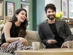 Shahid Kapoor Revelas Mira Rajout Would Have Dated Sidharth Malhotra