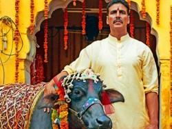 Toilet Ek Prem Katha Surpasses Shows Secret Superstar Baahubali