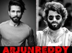 Shahid Kapoor S Arjun Reddy Remake Release On 21st June