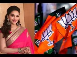 Madhuri Dixit Will Join Politics