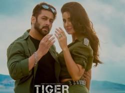 Salman Khan And Katrina Kaif S Tiger 3 To Start In 2020 January