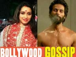 Bollywood Top Gossips Rumours Of The Week Shraddha Kapoor Wedding Shahid Kapoor Fees